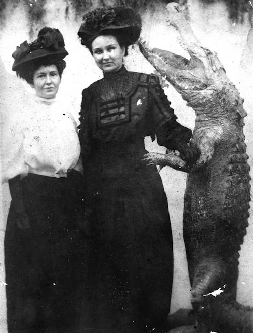 sewer-gas-women-with-alligator